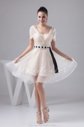 A-line V-neck Knee-length Sleeveless Chiffon Dress