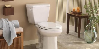 Toilet Buying Guides