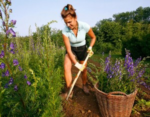 green-gardening-tips