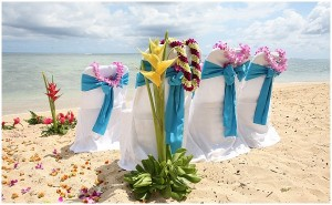 eco-wedding-on-beach