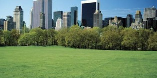The Top 25 Green Cities in the U.S