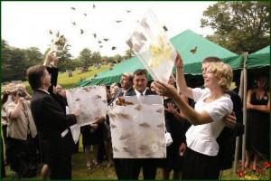 releasing-butterfly