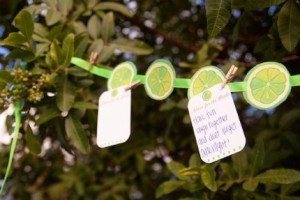 eco-friendly-bridal-shower