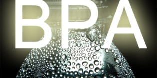 How Harmful is BPA to Our Body