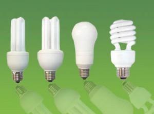 Fluorescent-Bulbs