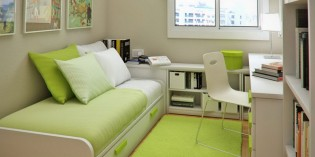 How to Decorate your Dorm Room Green?