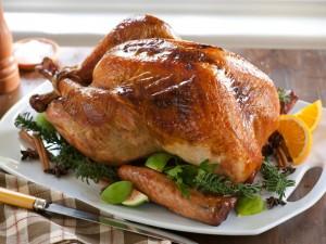 juicy-turkey
