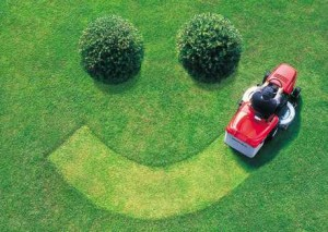take-care-of-your-lawn
