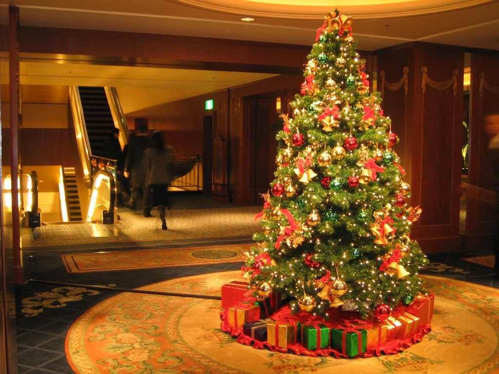 How to Keep your Christmas Tree Alive for Longer Time – The Green Guide