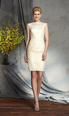 Sheath/Column Bateau Sleeveless Lace Mother of the Bride Dress