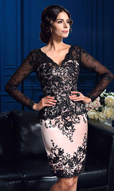 Sheath/Column V-neck Long Sleeve Lace Mother of the Bride Dress