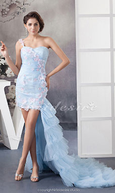 Sheath/Column One Shoulder Court Train Sleeveless Tulle Dress