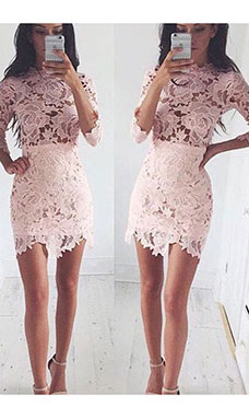 Sheath/Column Scoop 3/4 Length Sleeve Lace Dress