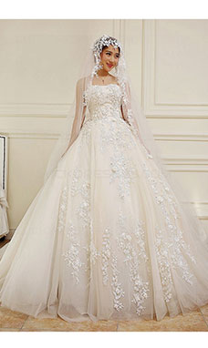 Ball Gown Strapless Sleeveless Lace Wedding Dress