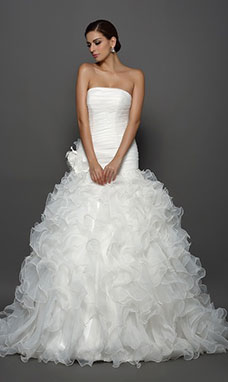 Ball Gown Strapless Sleeveless Organza Wedding Dress