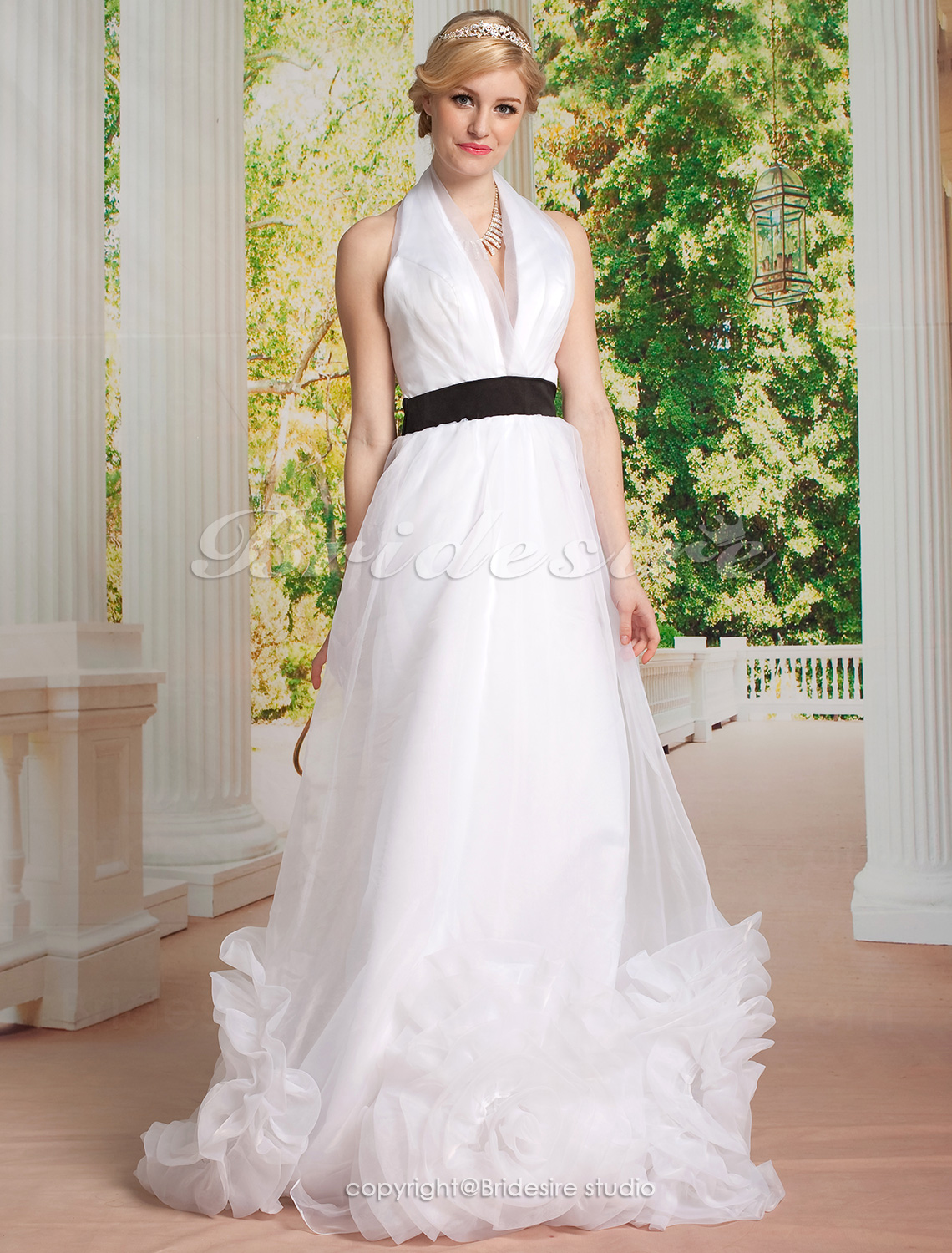 A-line Tulle Floor-length V-neck Wedding Dress